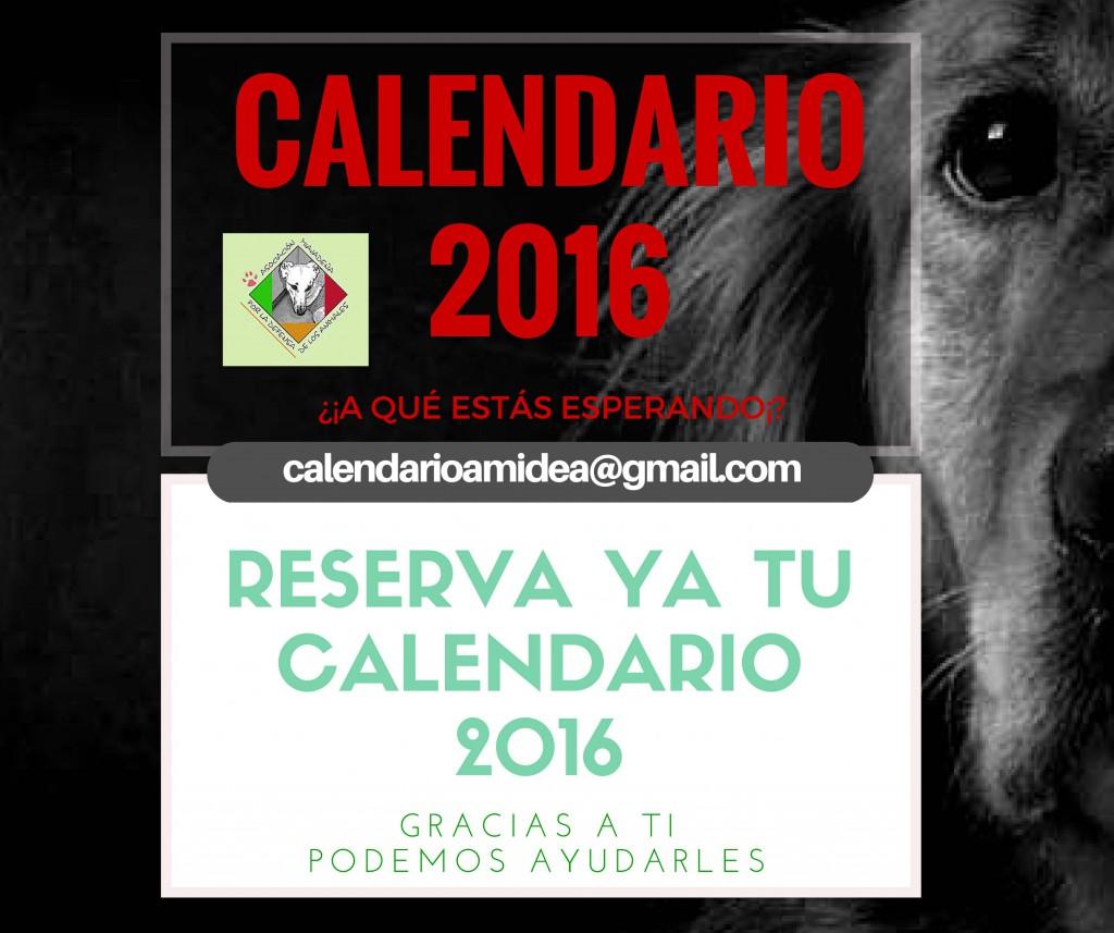 Reserva ya tu calendario en calendarioamidea@gmail.com